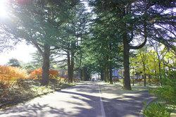 あがたの森2.jpg