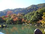 京都天龍寺.jpg
