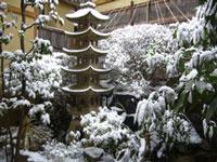 雪中庭.jpg